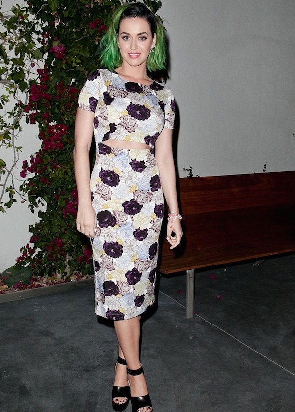 Katy Perry showed her support for Congressional candidate Marianne Williamson