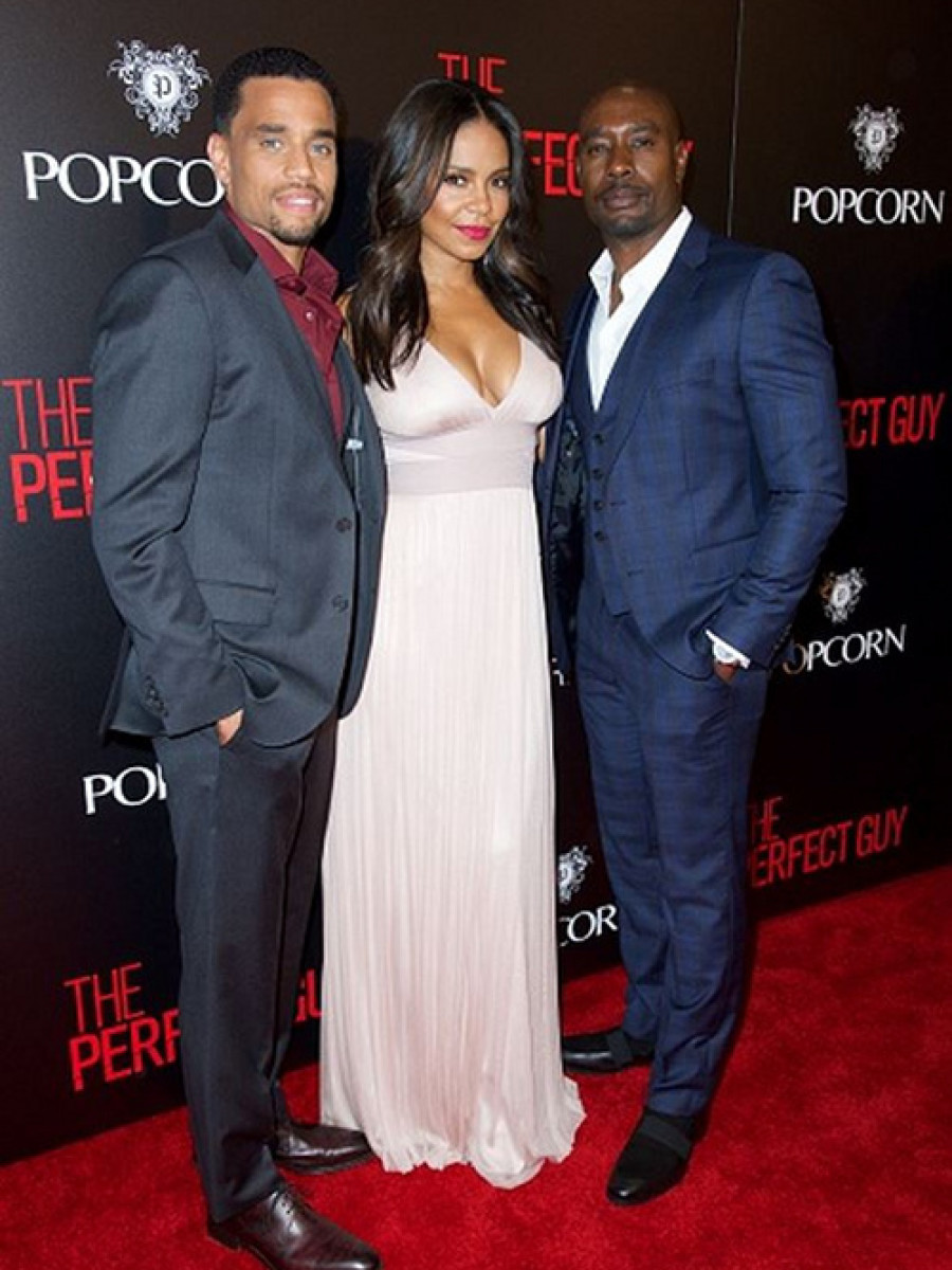 1 michael ealy Sanaa Lathan's The Perfect Guy Hollywood Premiere Amanda Wakeley Blush Pink Long Silk Tulle Dress